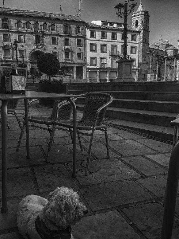 louie plaza andalucia